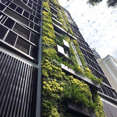 Urban Garden Landscaping Home