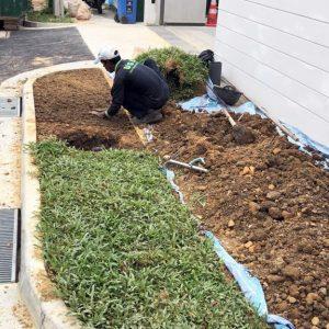 Ground Maintenance